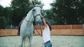 Happy little boy caressing his friendly white horse on the training area. 4K.  stock video footage