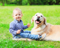 Happy little boy child and Golden Retriever dog is sitting together on the grass on summer stock photo
