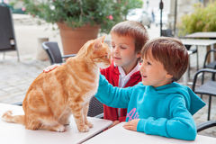 Happy little boy, child, playing with lovely cat outdoors Royalty Free Stock Image