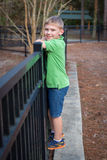 Happy little boy climbing fence at park Royalty Free Stock Image