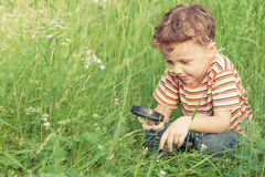 Happy little boy exploring nature with magnifying glass Stock Image