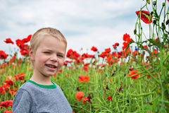 Happy little boy in field with red poppies Stock Image