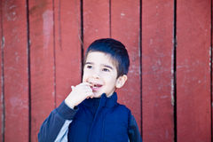 Happy Little Boy with a Finger in his Mouth. Little boy looking up and to the left in front of red textured background biting on his finger with an amazed Royalty Free Stock Image