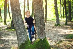 Happy little boy at the forest. Joyful child playing on the park at sunny day. Family walk at wild nature. Summer holidays or. Vacations at nature. Playful boy royalty free stock image