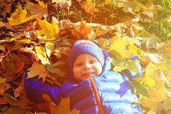 Happy little boy fun in autumn fall Stock Photo