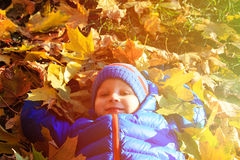 Happy little boy fun in autumn fall Royalty Free Stock Photos