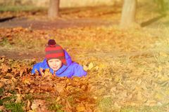 Happy  little boy fun in autumn leaves Royalty Free Stock Images