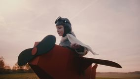 Happy little boy in fun cardboard plane costume spinning in sunset autumn field playing aviation pilot slow motion. Smiling excited male child enjoying leisure stock footage