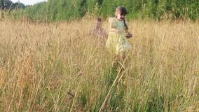 Happy little boy and girl run in dry grass at summer evening stock video