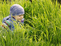 Happy little boy on green grass Royalty Free Stock Photos