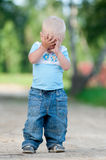Happy little boy in the green park Stock Photography