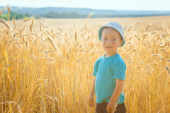 Happy little boy having fun in wheat Royalty Free Stock Photos