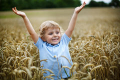 Happy little boy having fun in wheat field in summer Stock Images