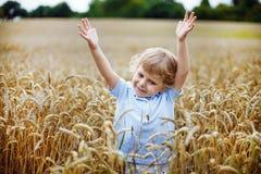 Happy little boy having fun in wheat field in summer Royalty Free Stock Image