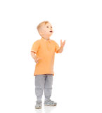 Happy little boy looking up Royalty Free Stock Images