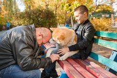 Happy little boy and man walking with dog in the park. Animal concept. Handsome men and cute little boy having fun with doggie in the park outdoors. Happy Stock Photos