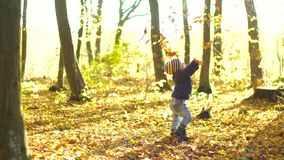 Happy little boy playing with autumn leaves throwing leaves in the forest. Happy little boy playing with autumn leaves in the woods throwing leaves in UHD
