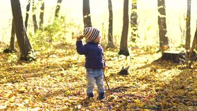 Happy little boy playing with autumn leaves throwing leaves in slow motion. Happy little boy playing with autumn leaves in the woods throwing leaves in slow