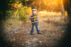 Happy little boy playing outdoor in beautiful autumn scenery Royalty Free Stock Image