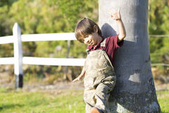 Happy Little Boy Playing a Tree Stock Photography