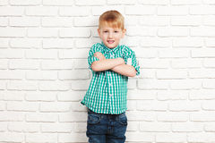Happy little boy Stock Image