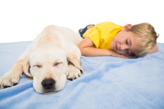 Happy little boy with puppy Royalty Free Stock Photos