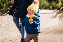 Happy little boy in the rays of the sun in autumn stock image