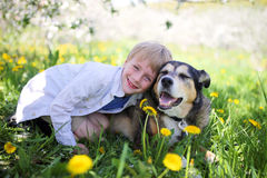 Happy Little Boy Relaxing in Flower Meadow and Hugging his Pet D. A happy little seven year old boys is smiling and hugging his pet German Shepherd Dog, as they stock image