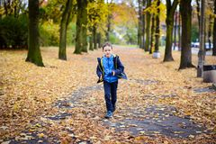 Happy little boy running Royalty Free Stock Photo