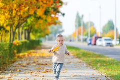 The happy little boy runs on the sidewalk in the autumn park. Royalty Free Stock Image