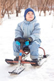 Happy little boy sledging at sleig Stock Photography