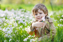 Happy little  boy in spring garden with blooming white flowers Stock Image