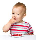 Happy little boy with strawberries Royalty Free Stock Photography
