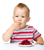 Happy little boy with strawberries Royalty Free Stock Images