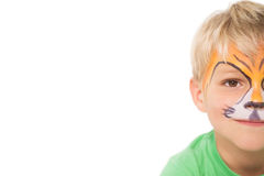 Happy little boy in tiger face paint Stock Photos
