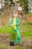 Happy little boy with tree seedling stock photo