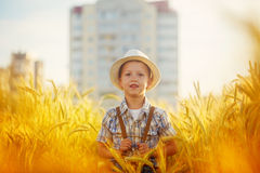 Happy little boy walking on wheat summer field. Harvest concept. Royalty Free Stock Photos
