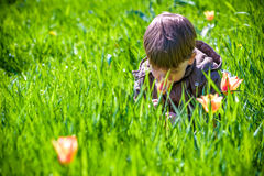 Happy little brothers kids in spring garden with blooming trees, Stock Photography