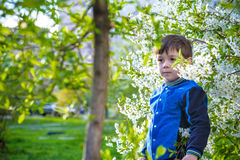 Happy little brothers kids in spring garden with blooming trees, Stock Photos