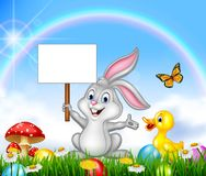 Happy little bunny holding blank sign with Easter background Royalty Free Stock Photo