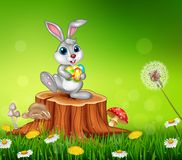 Happy little bunny holding easter eggs on tree stump in summer season background Stock Photo