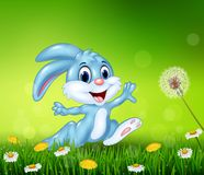 Happy little bunny jumping on grass background Royalty Free Stock Photos