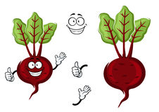 Happy little cartoon beetroot with green leaves royalty free illustration