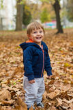 Happy little child, baby boy laughing and playing in autumn.  royalty free stock images