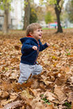 Happy little child, baby boy laughing and playing in autumn Royalty Free Stock Images