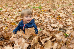 Happy little child, baby boy laughing and playing in autumn Stock Photo