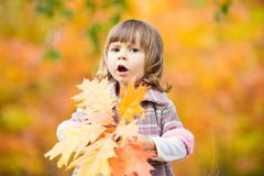 Happy little child, baby girl laughing and playing in the autumn on the nature walk outdoors Royalty Free Stock Photo