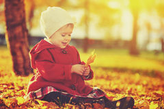 Happy little child, baby girl laughing and playing in autumn Royalty Free Stock Images