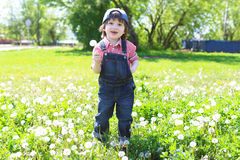 Happy little child with blowball outdoors in summer Royalty Free Stock Images