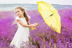 Happy little child girl in lavender field with Royalty Free Stock Photography